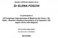 FOSCHI_436_Certificate