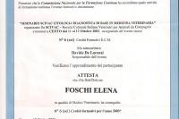 Elena Foschi