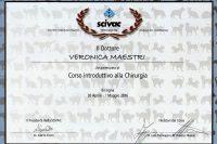 Maestri-Veronica-30aprile-1maggio-2016
